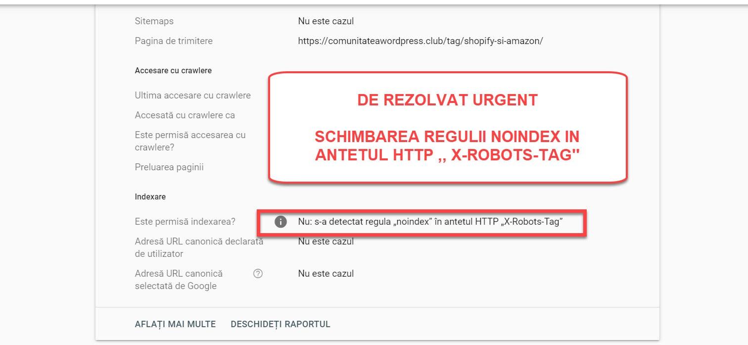 Imagen 3 - Etiqueta de robots HTTP X Noindex