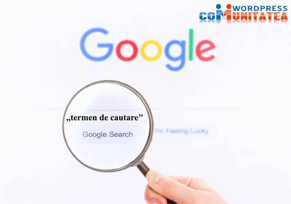 Bazele SEO - Ce este un termen de căutare?