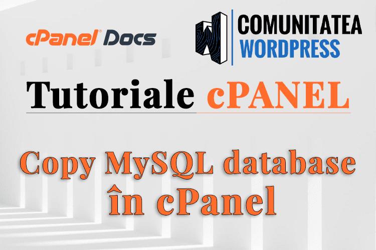 Cum copiezi o bază de date MySQL direct în phpMyAdmin