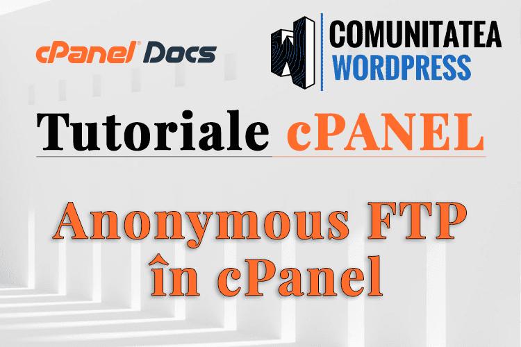 FTP Anonim - Cum se utilizează în interfața cPanel