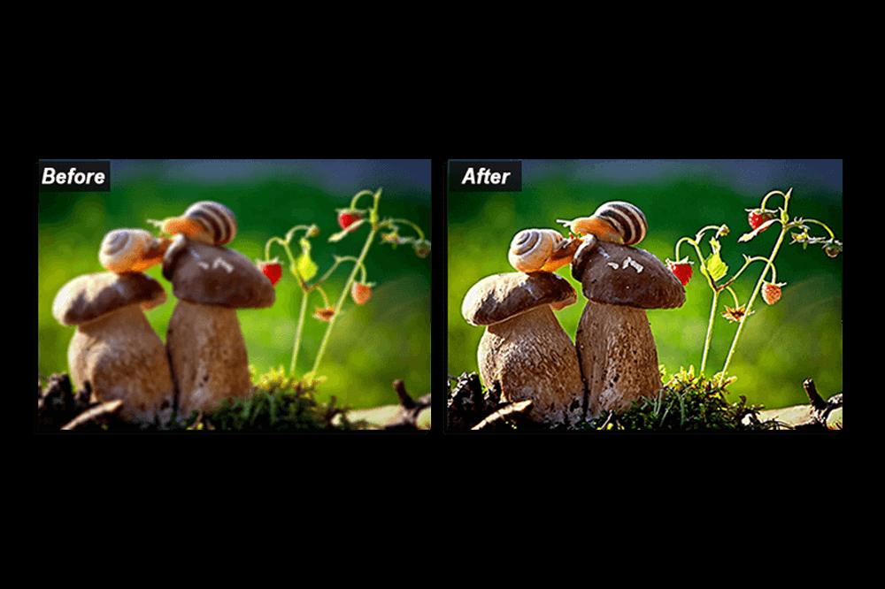 Fotografía borrosa: 5 trucos para una fácil aclaración