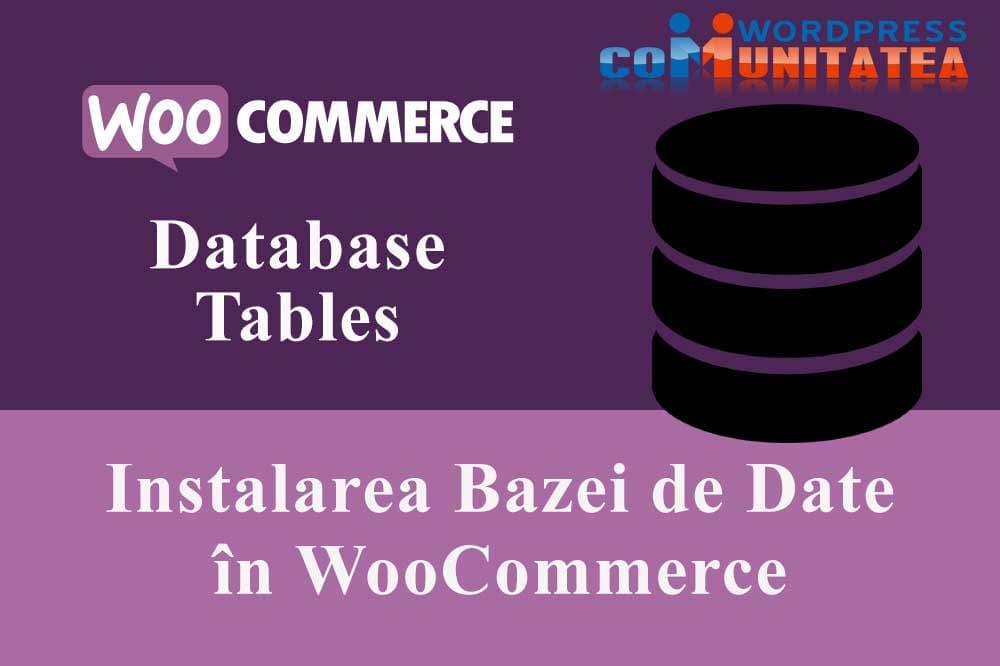 Instalarea Bazei de Date în WooCommerce