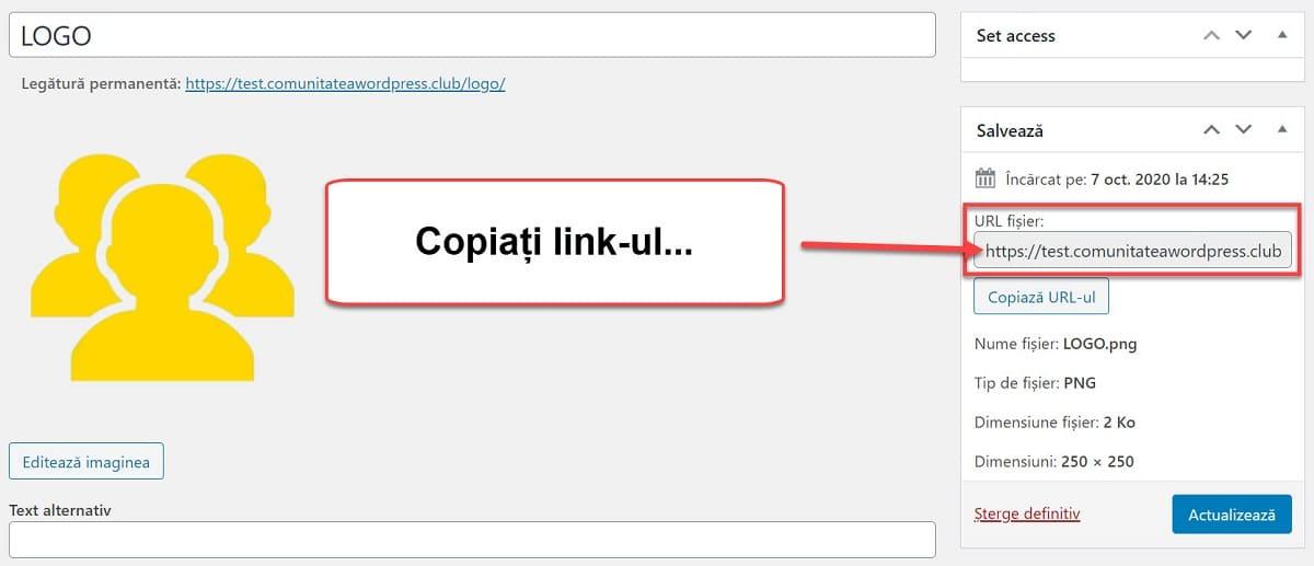 Copia el enlace