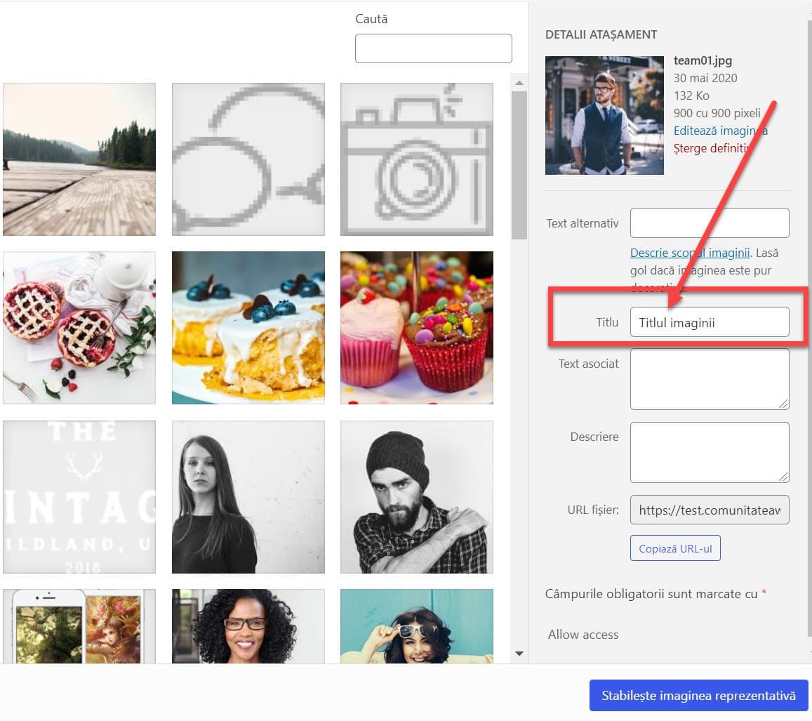 Cómo agregar un título de imagen en WordPress Cuando cargue una imagen usando el cargador de medios incorporado en WordPress, verá un campo de título.  Este campo de título lo usa WordPress para administrar sus archivos multimedia y no debe confundirse con el atributo de título que se usa dentro de una imagen.