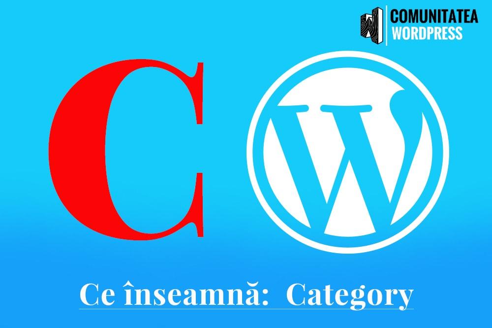 Ce este: Category – Categorie