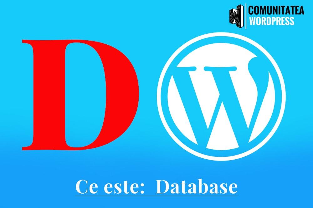 Ce este: Database - Baza de date