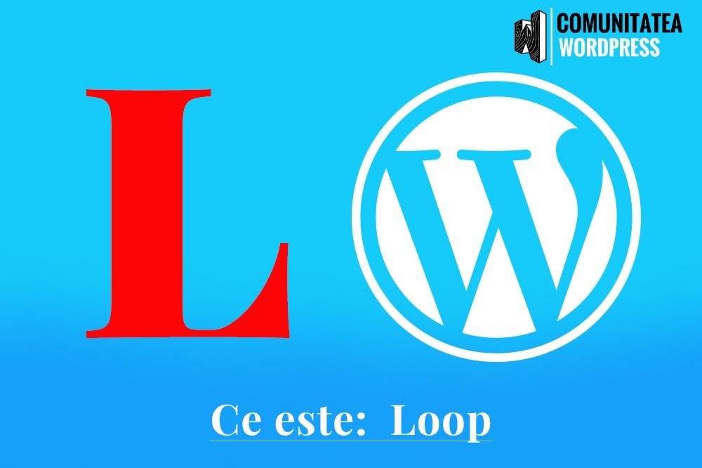 Ce este: Loop - Buclă