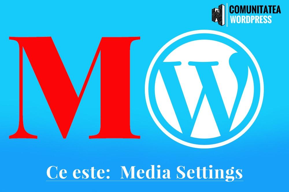 Ce este: Media Settings - Setări media