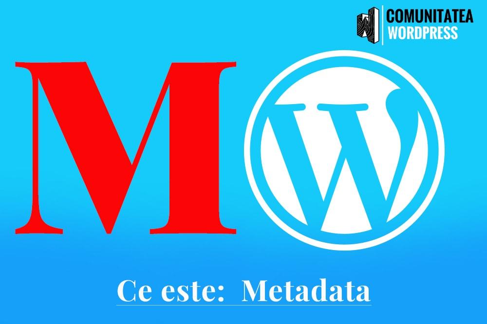 Ce este: Metadata