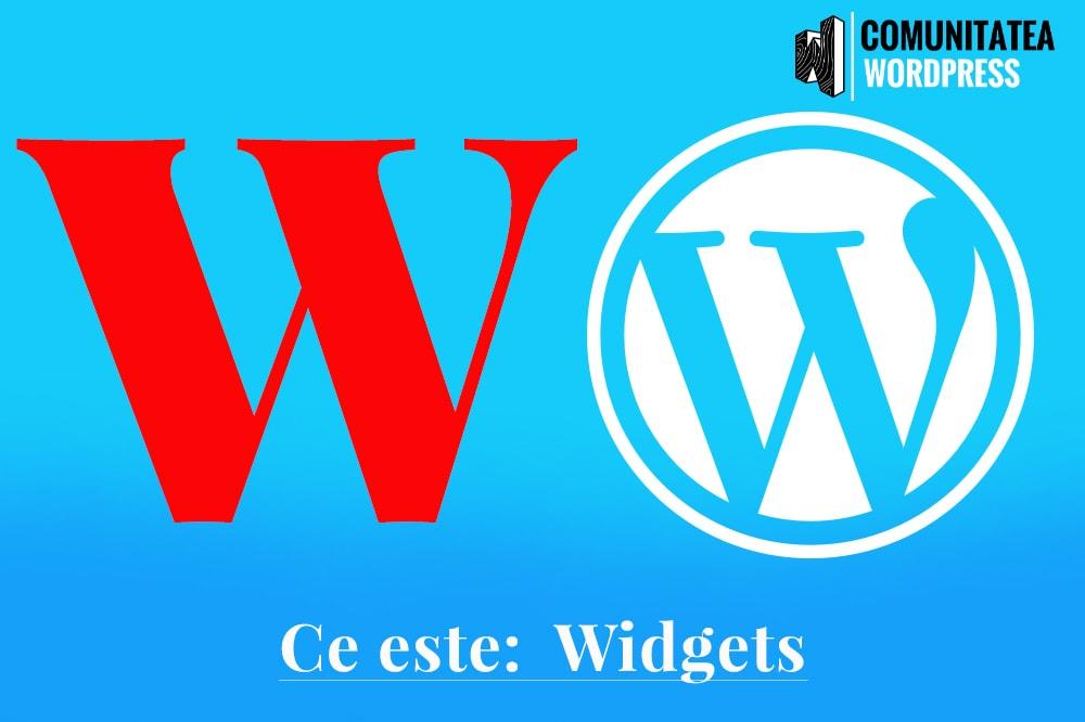 Ce este: Widgets